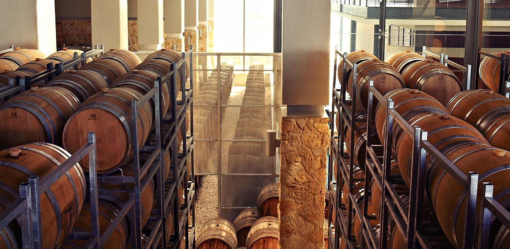 Barkan winery - a wine paradise